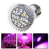28 LED Grow Light Bulb, Dirance 4W E27 E14 GU10 Full Spectrum Grow Lights Lamp For Seed Starting, Plant Lights for Indoor Greenhouse Garden Hydroponics, Organic Soil (B-E14)