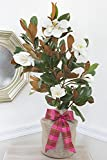Southern Magnolia Birthday Gift Tree by The Magnolia Company - Get Beautiful and Fragrant Flowers on a Lush Birthday Magnolia Tree Gift