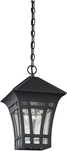 Sea Gull Lighting 60131-12 Herrington Transitional One-Light Outdoor Pendant Lantern Outside Fixture