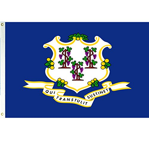 Vista Flags 3x5 Connecticut Flag Polyester State Banner 3' x 5' CT