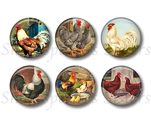 Plymouth Kitchen - Chicken and Rooster Magnets - Set of Six 1.5 Inch Magnets - Farm Kitchen Decor - Farm Magnets