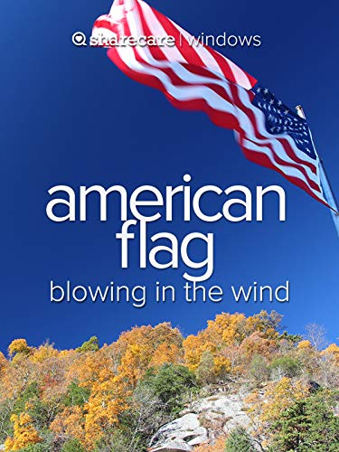 American Flag blowing in the wind (Hickory North Carolina)