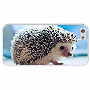 Apple iPhone 5 5S Cases Customized Gifts Hedgehog White Hard PC Case