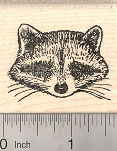 Raccoon Face Rubber Stamp, North American Racoon,