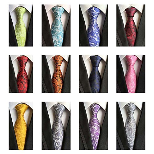 Weishang Lot 12 PCS Classic Men's 100% Silk Tie Necktie Woven JACQUARD Neck Ties (Style 3)