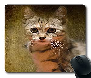 """Illustration Art Autumn Flower Oblong Mouse Pads/ Standard Rectangle Gaming Mousepad in 9""""*7 by icecream design"""