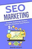 SEO Marketing: Internet Marketing Secrets That Will Maximize Your Profits