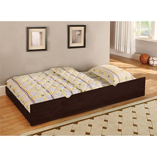 Furniture of America Trundle, Twin, Dark Walnut