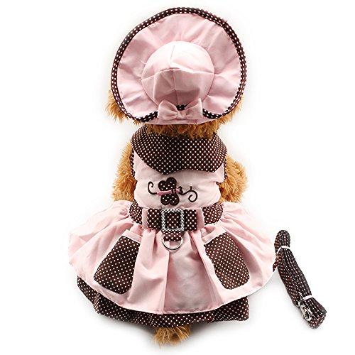 Small Dog Dress Harness Clothes (4pcs Cute Butterfly Dog Pet Cat luxury princess Tutu Dress Skirt Set Small Dog Clothes Shirt Costume( Dog Dress+Dog Hat+Dog Panties+Dog Leash ) (S, Pink))