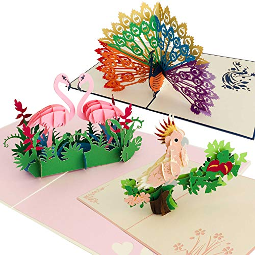 Premium Handmade 3D Pop Up Birthday Card 3 Pack | Greeting Cards for Adults & Happy Birthday Kid's Cards | Full Color Laser Cut Cards for Moms, Dads & Children | Birds, Parrot, Flamingos, Peacock
