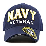 The Hat Depot 1100 Official Licensed Military 3D Embroidered Logo Veteran Cap