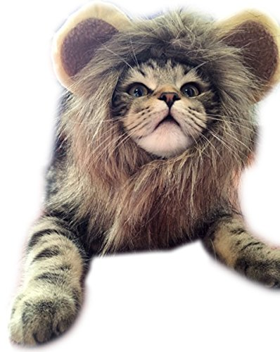 Open INnoVation Pet Halloween Cosplay Costume Lion Wig for Cat and Small Dog (S,Brown)