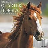 American Quarter Horses 2020 Wall Calendar