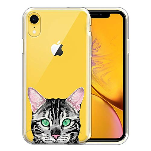 Spotted Silver Cats - FINCIBO Case Compatible with Apple iPhone XR 6.1 inch, Clear Transparent TPU Silicone Protector Case Cover Soft Gel Skin for iPhone XR - Spotted Silver Bengal Kitten Cat