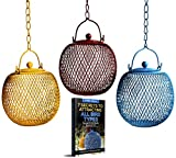 Backyard Expressions - Set of 3 Squirrel Proof Bird Feeders for Outside - Bonus Ebook and Squirrel Proof Guide Included