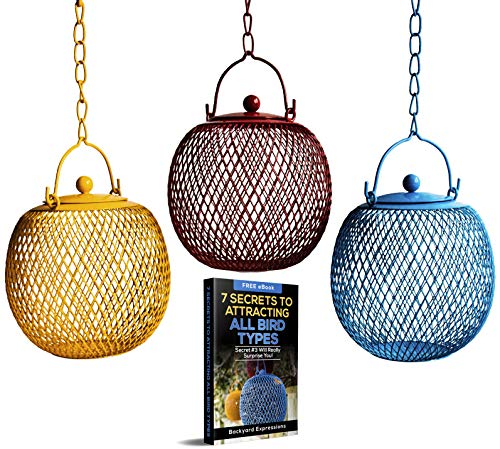 - Set of 3 Squirrel Proof Bird Feeders for Outside - Bonus Ebook and Squirrel Proof Guide Included ()