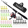 Kids Fishing Pole, Rod and Reel Combos, Fishing Rod Set with Rod+Reel+Lures+Carrier, A Full Fishing Kit for Freshwater and Saltwater