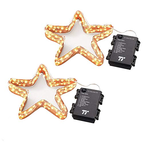 TaoTronics Battery Operated LED String Lights (2 Pack), Waterproof 16.4 feet 50 LED String Lights Indoor and Outdoor, Decorative Lights for Wedding, Party, Holiday