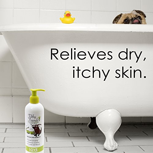 Jackie Doodles Pet Shampoo – Easily Removes Odors, Dirt & Itchy Dander - Awesome Results Guaranteed
