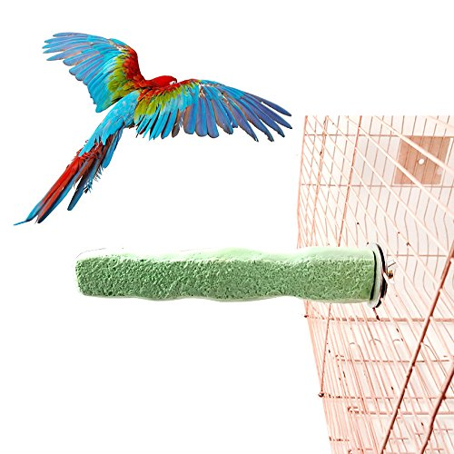 w Grinding Stick Flat Stand Platform Toy for Bird Parrot Macaw African Grey Budgie Parakeet Cockatiel Conure Lovebird Finch Cage Decor ()