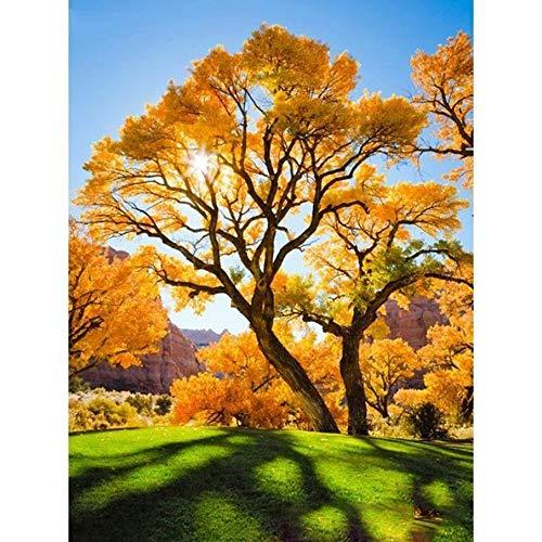 (GMYANZSH 5D DIY Diamond Mosaic Landscape Diamond Embroidery Yellow Tree Diamond Painting Woods Pictures Needlework Home)