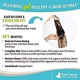Raw Paws Freeze Dried Raw Ferret Food, Beef 16-oz