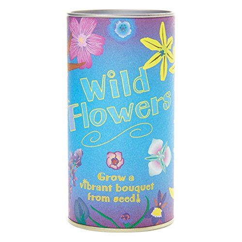 Wildflower Mix | Seed Grow Kit | The Jonsteen Company Love Grows Wildflower Seeds