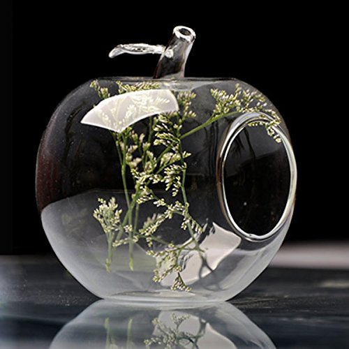 Bluelover Apple Shape Flower Glass Vase Moss Micro Landscape Eco Bottle