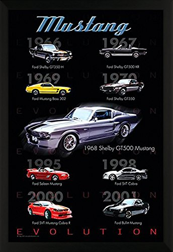 Ford Mustang Evolution American Muscle Sports Car Photography Hobby Poster Print (24X36 FRAMED POSTER) Mustang Evolution Poster