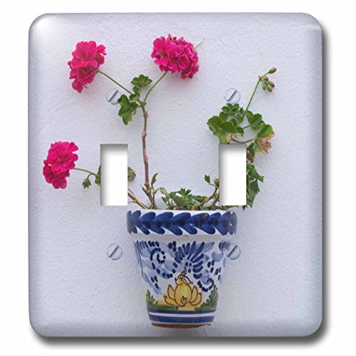 3dRose Danita Delimont - Flowers - Spain, Andalusia. Arcos de la Frontera. Painted ceramic flower pot. - Light Switch Covers - double toggle switch (lsp_277888_2) by 3dRose