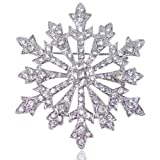 EVER FAITH Women's Austrian Crystal Winter Snowflake Brooch