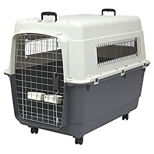 6. SportPet Designs Plastic Kennel