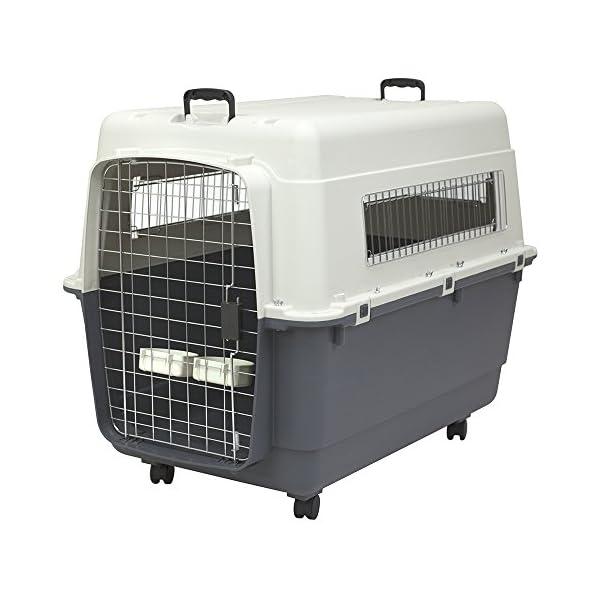 SportPet Designs Plastic Kennels Rolling Plastic Wire Door Travel Dog Crate-2XL