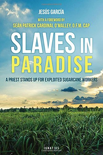 Slaves in Paradise: A Priest Stands Up for Exploited Sugarcane Workers pdf epub