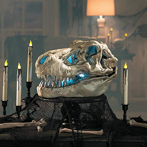 Fun Express - T-Rex Skeleton Head - Party Item for Boys and Girls of All Ages - Great for All Celebrations -