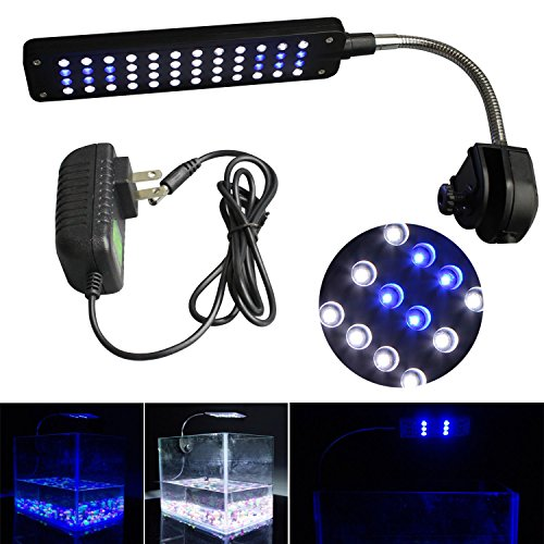 Mingdak Clip on LED Aquarium Light Kit for Fish Tank,48 Leds Light,white and Blue Color Lighting