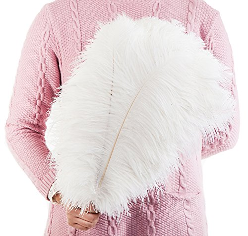 10PCS Pure White 10-12Inch(25-30CM) Fullness Natural Ostrich Feathers for Wedding Sewing Crafts Costumes Decoration ()