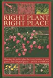 Right Plant Right Place : Choosing The Perfect Plant For Every Location In Your Garden