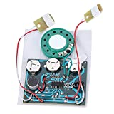 30s Recordable Music Sound Voice Recording Module Device Chip 0.5W with Button Battery for Greeting Card DIY Audio Cards Gifts(Wired Double Button Control)