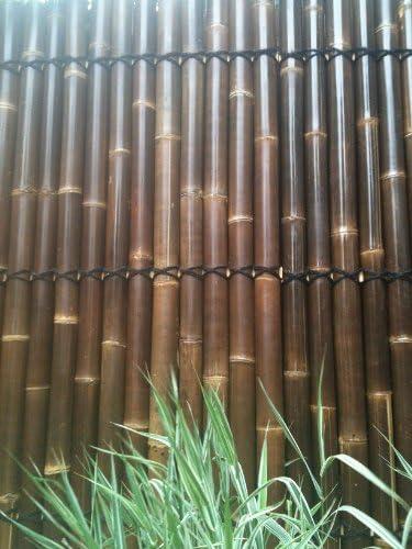 4 Panel de valla fabricado de gigante negro bambú: Amazon.es: Jardín