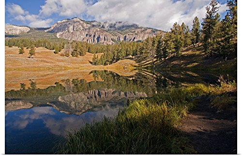 Poster Print entitled Reflection on Trout Lake in Yellowston