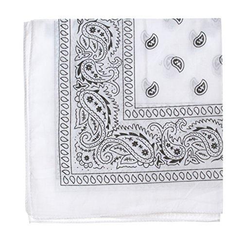 Bandanas Dozen units cotton Paisley product image