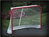 EZGoal Hockey Replacement Net with Skirt, 4 x 6-Feet
