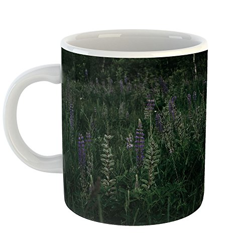 Westlake Art - Coffee Cup Mug - Tree Grassland - Modern Picture Photography Artwork Home Office Birthday Gift - 11oz - Rose Prairie Cup