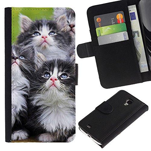 EuroCase - Samsung Galaxy S4 Mini i9190 MINI VERSION! - kittens munchkin cat pet feline - Cuero PU Delgado caso cubierta Shell Armor Funda Case Cover