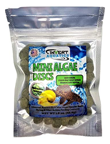 (Triton Aquatics Mini Algae Discs - Sinking Diet for Snails, Shrimp & Bottom Feeding Fish (1.5 oz (42.5g)))