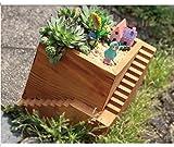 Succulent plants wood square step flowerpot DIY cactus bonsai flower pot trays home Desktop decoration storage box vase