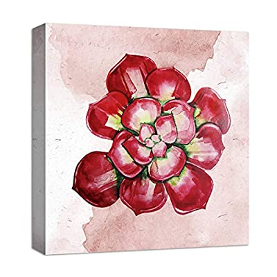 for Living Room Bedroom Home Artwork Paintings Succulent