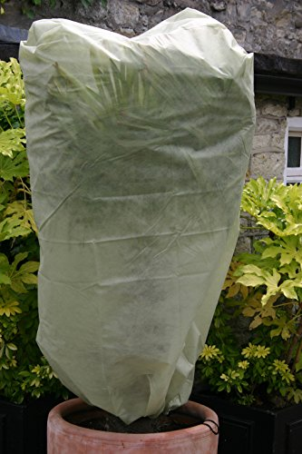 best shrub covers for snow