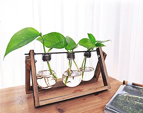 antique finishing Rectangular Glass Vase Centerpieces Creative Edison Bulb for Table Decoration Water Culture Containers with Wooden Hanger 3 Bulbs vase